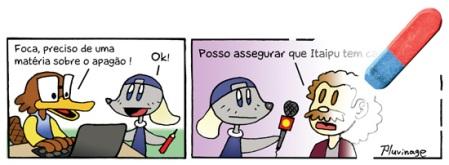 Foca 001